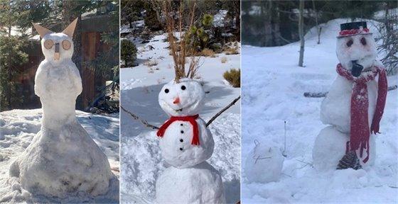 Snowman Winners